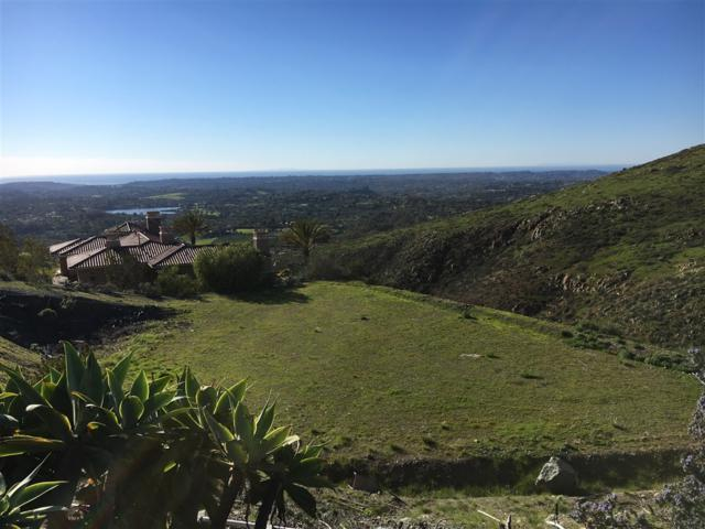 17850 Punta Del Sur #66, Rancho Santa Fe, CA 92067 (#190032961) :: Pugh | Tomasi & Associates