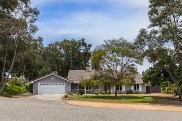 3191 Overland Trail, Fallbrook, CA 92028 (#190033139) :: Neuman & Neuman Real Estate Inc.