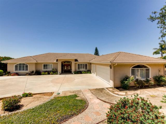 2386 Via Del Aquacate, Fallbrook, CA 92028 (#190033282) :: Coldwell Banker Residential Brokerage
