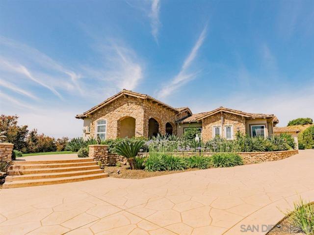 30207 Au Bon Climat Court, Bonsall, CA 92003 (#190033425) :: Allison James Estates and Homes