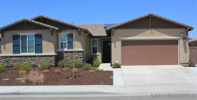 29208 Catalpa, Lake Elsinore, CA 92530 (#190033438) :: Allison James Estates and Homes