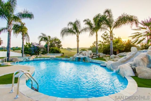 1233 Avenida Naranja, Ramona, CA 92065 (#190033615) :: Coldwell Banker Residential Brokerage