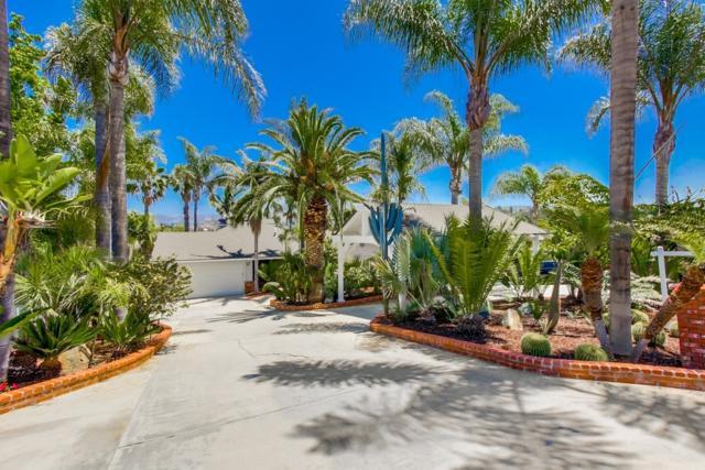 2339 Primrose Ave, Vista, CA 92083 (#190033745) :: Allison James Estates and Homes