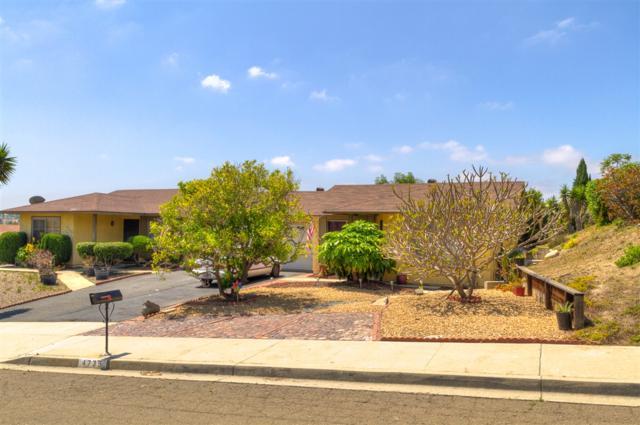 4735 Rim Rock Rd, Oceanside, CA 92056 (#190033799) :: Allison James Estates and Homes
