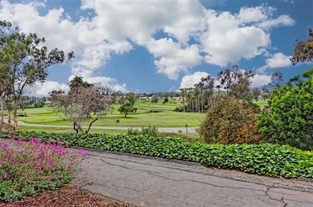 2348 La Costa Ave 113 #113, Carlsbad, CA 92009 (#190033802) :: Allison James Estates and Homes