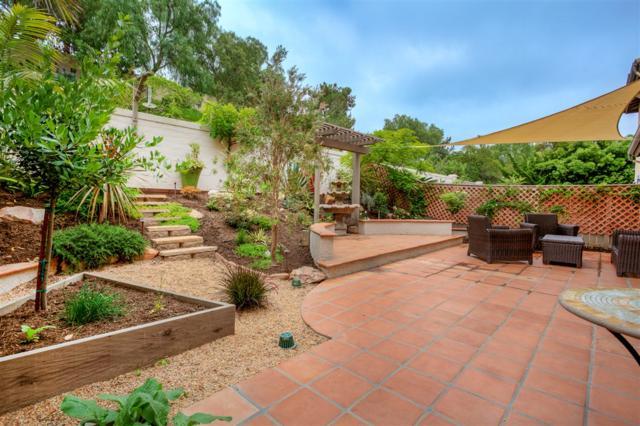 6441 Alexandri Circle, Carlsbad, CA 92011 (#190033823) :: Allison James Estates and Homes