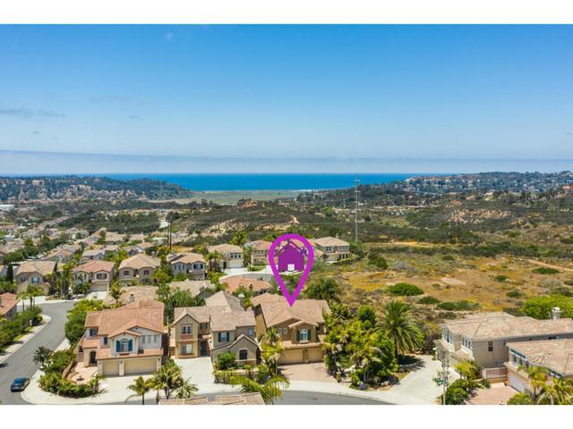11410 Ocean Ridge Way, San Diego, CA 92130 (#190033853) :: Coldwell Banker Residential Brokerage