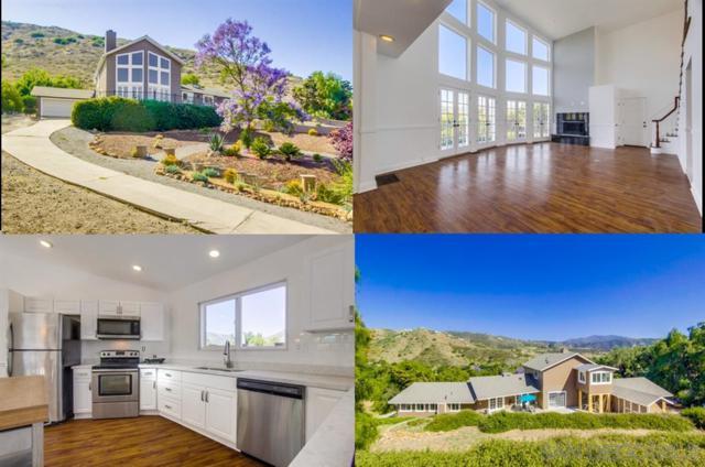 5796 Dehesa Rd, El Cajon, CA 92019 (#190034059) :: Ascent Real Estate, Inc.