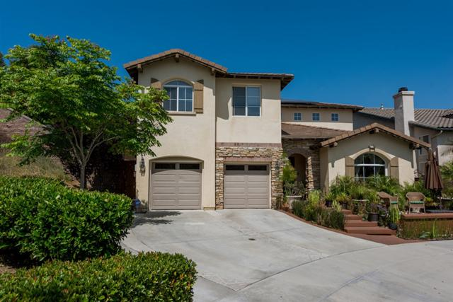 1505 Countryside Place, Chula Vista, CA 91913 (#190034253) :: Coldwell Banker Residential Brokerage
