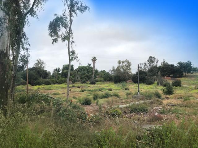 00 Conway Dr #2241433200, Escondido, CA 92026 (#190034442) :: Neuman & Neuman Real Estate Inc.
