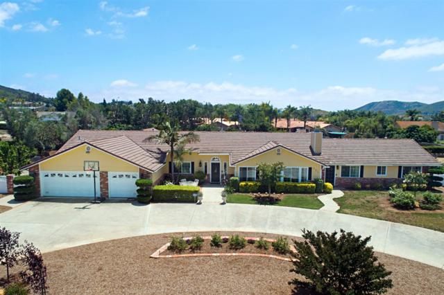 555 Cox Rd., San Marcos, CA 92069 (#190034569) :: Coldwell Banker Residential Brokerage