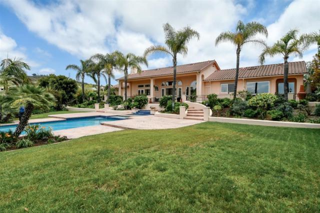3376 Lone Hill Ln, Encinitas, CA 92024 (#190034600) :: Coldwell Banker Residential Brokerage