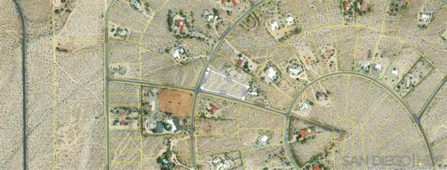 196 Verbena Dr #196, Borrego Springs, CA 92004 (#190034631) :: Neuman & Neuman Real Estate Inc.