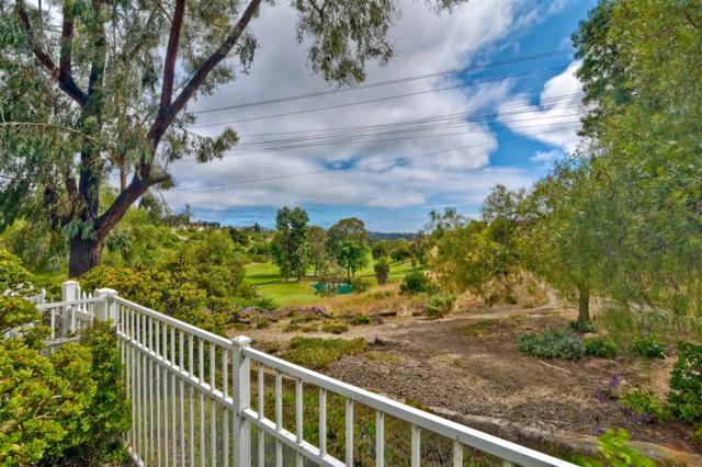 2165 Anda Lucia Way, Oceanside, CA 92056 (#190034662) :: Allison James Estates and Homes