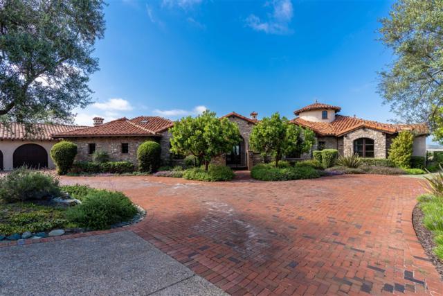 18382 Via Ambiente, Rancho Santa Fe, CA 92067 (#190034699) :: Coldwell Banker Residential Brokerage