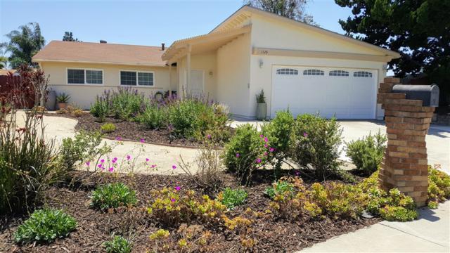 1729 Rees Rd, San Marcos, CA 92069 (#190034883) :: Coldwell Banker Residential Brokerage