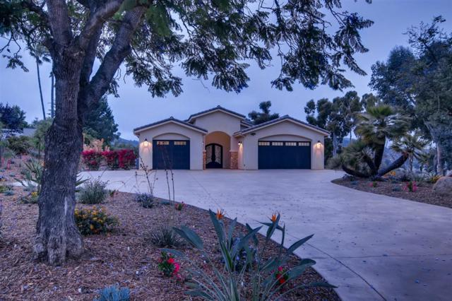 3562 Yucca Way, Fallbrook, CA 92028 (#190035088) :: Welcome to San Diego Real Estate