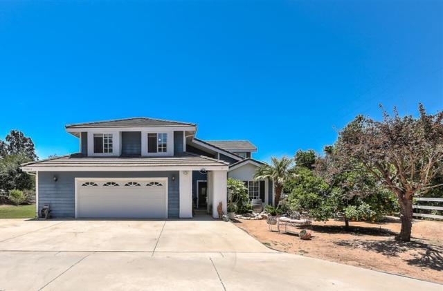 1660 Joshua Tree Ln, Fallbrook, CA 92028 (#190035130) :: Allison James Estates and Homes