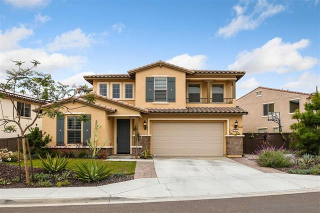 507 Machado Way, Vista, CA 92083 (#190035167) :: Neuman & Neuman Real Estate Inc.