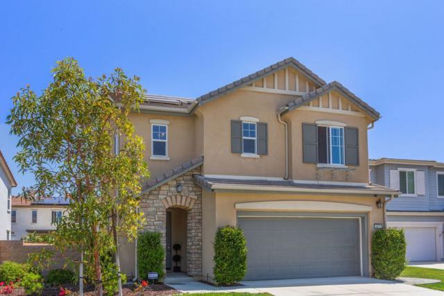 4029 Lake Park Lane, Fallbrook, CA 92028 (#190035183) :: Allison James Estates and Homes