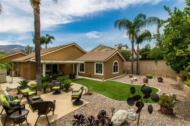 15060 Danielle Way, Lake Elsinore, CA 92530 (#190035212) :: Neuman & Neuman Real Estate Inc.
