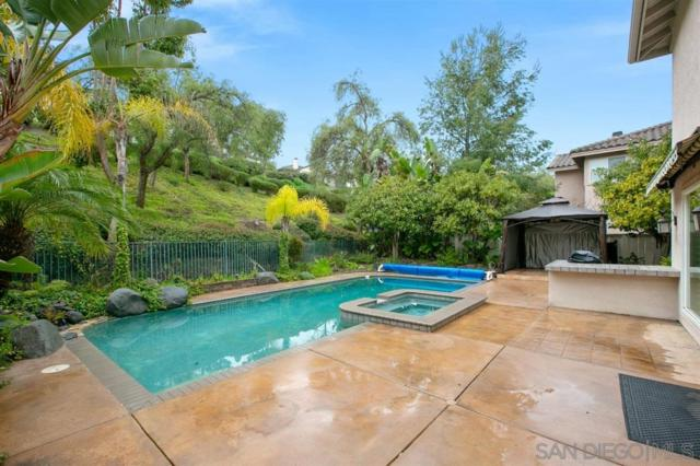 1047 Calle De Alcala, Escondido, CA 92025 (#190035401) :: Neuman & Neuman Real Estate Inc.