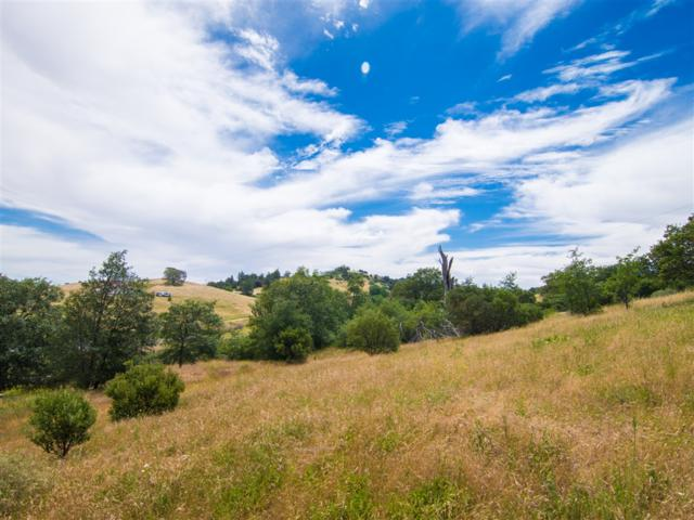 2748 Hwy 79 #00, Julian, CA 92036 (#190035541) :: Cane Real Estate