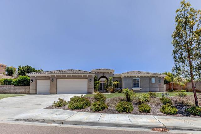 619 Via Maggiore, Chula Vista, CA 91914 (#190035694) :: Neuman & Neuman Real Estate Inc.