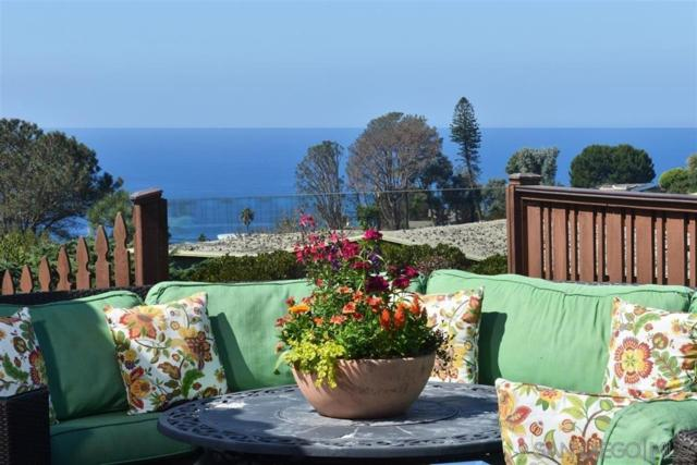 1325 Rodeo Dr, La Jolla, CA 92037 (#190036498) :: Whissel Realty