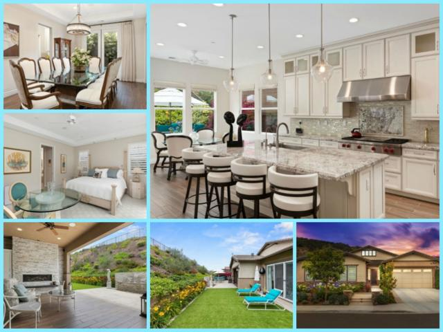 1085 Duncan Ct, San Marcos, CA 92078 (#190036564) :: Coldwell Banker Residential Brokerage