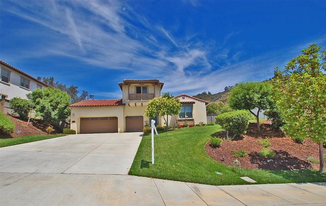 2582 Honeybell, Escondido, CA 92027 (#190036791) :: Neuman & Neuman Real Estate Inc.