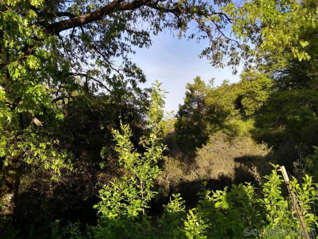 22237 Crestline Rd #0, Palomar Mountain, CA 92060 (#190038057) :: Neuman & Neuman Real Estate Inc.