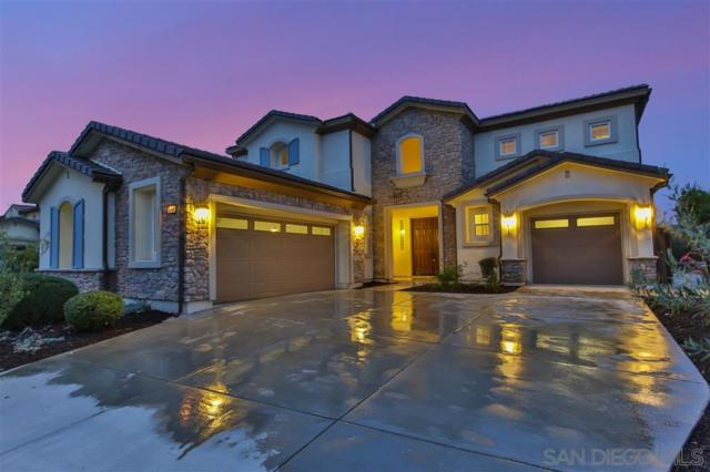 1109 Village Drive, Oceanside, CA 92057 (#190038338) :: Keller Williams - Triolo Realty Group