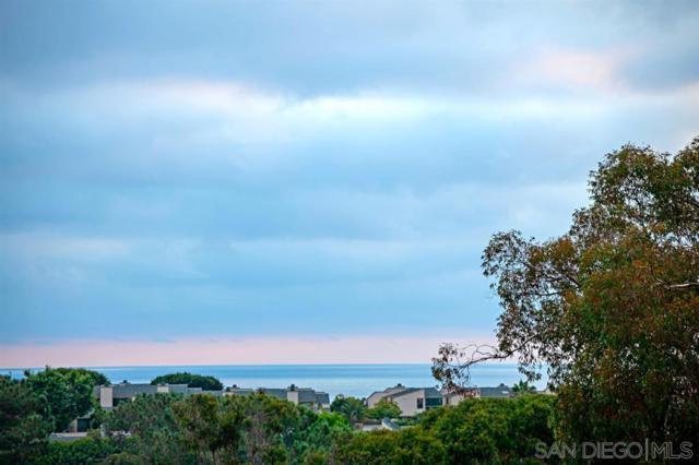 711 Marsolan, Solana Beach, CA 92075 (#190038445) :: Coldwell Banker Residential Brokerage