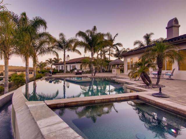 169 Mission Oaks Rd, Fallbrook, CA 92028 (#190038638) :: Allison James Estates and Homes