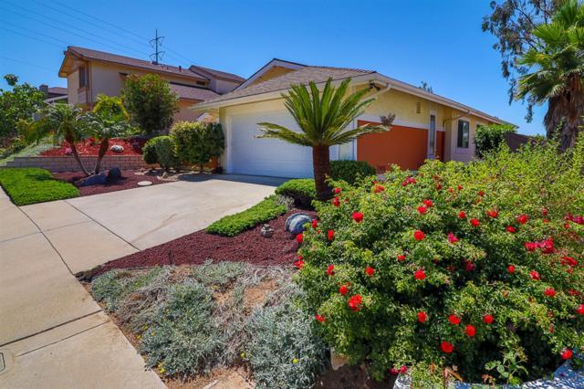 631 Wildflower Place, Escondido, CA 92026 (#190038734) :: Keller Williams - Triolo Realty Group