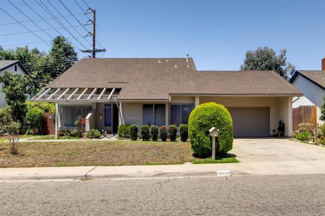 3810 Avenida Johanna, La Mesa, CA 91941 (#190038934) :: Neuman & Neuman Real Estate Inc.