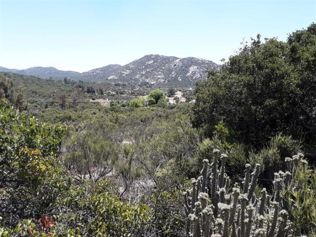 5.20 AC Shockey Truck Trail #51, Campo, CA 91906 (#190038994) :: Neuman & Neuman Real Estate Inc.
