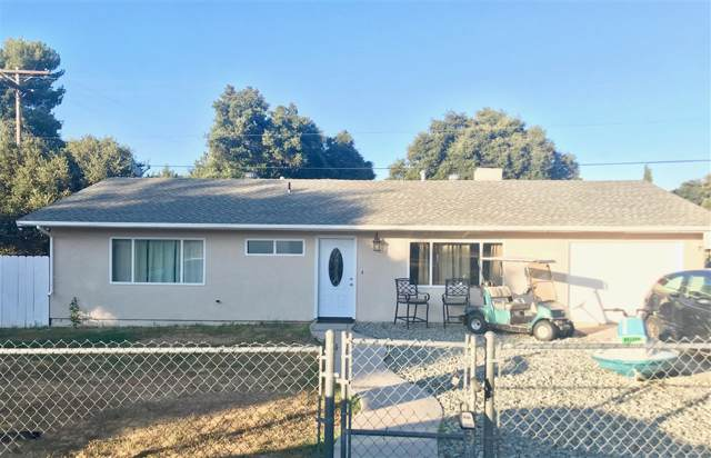 2463 Cypress Drive, Campo, CA 91906 (#190039075) :: Coldwell Banker Residential Brokerage