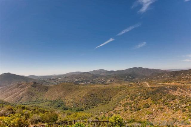 18368 Via Ambiente, Rancho Santa Fe, CA 92067 (#190039077) :: Coldwell Banker Residential Brokerage