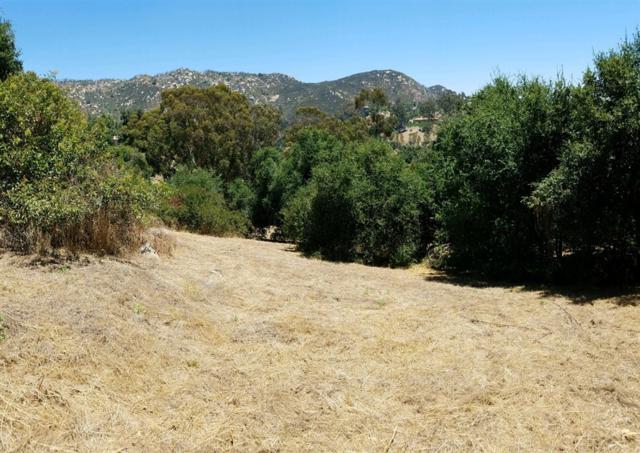 Jesmond Dene Rd 1.15 Acres, Escondido, CA 92026 (#190039111) :: Keller Williams - Triolo Realty Group