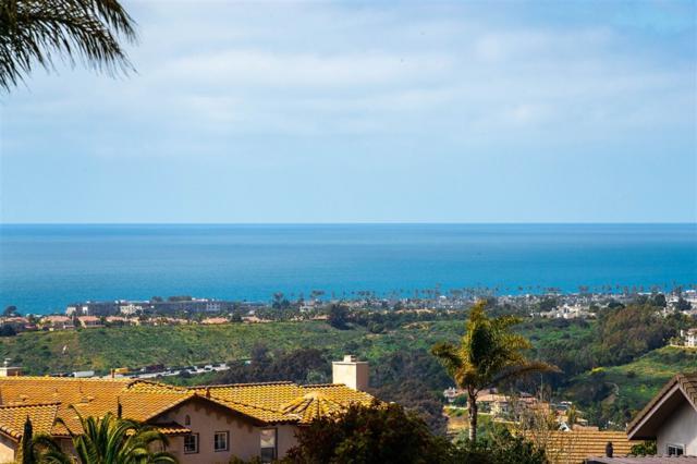 1679 Bella Laguna Ct., Encinitas, CA 92024 (#190039333) :: Neuman & Neuman Real Estate Inc.