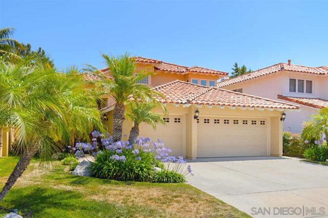 4653 Tarantella Ln, San Diego, CA 92130 (#190039408) :: Neuman & Neuman Real Estate Inc.