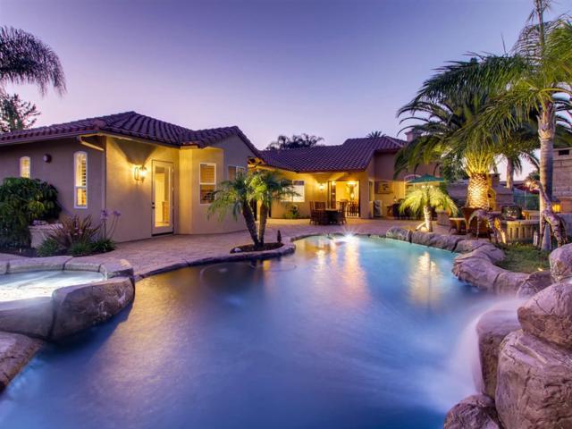 2181 Summer Bloom Ln, Fallbrook, CA 92028 (#190039414) :: Neuman & Neuman Real Estate Inc.