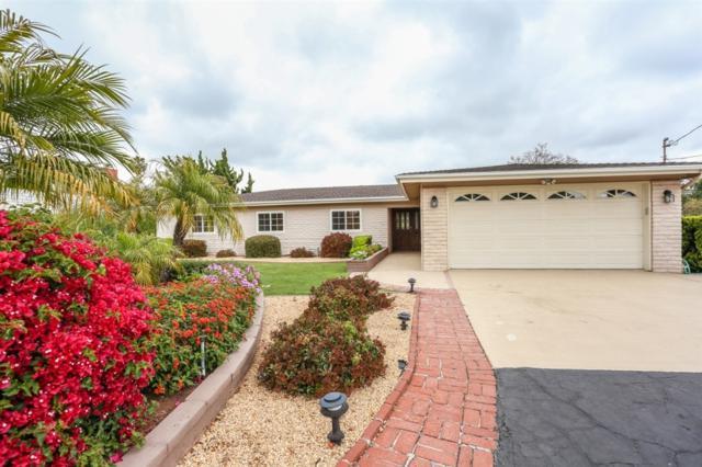 330 Zada Lane, Vista, CA 92084 (#190039629) :: Neuman & Neuman Real Estate Inc.