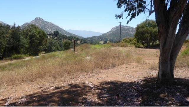 2458 White Wing Dr. N/A, Jamul, CA 91935 (#190039697) :: Neuman & Neuman Real Estate Inc.