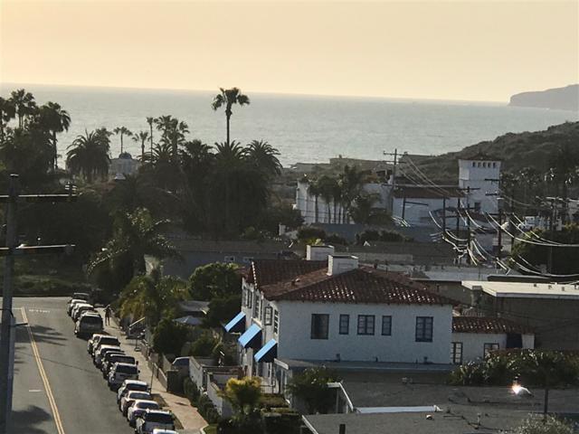 108 Avenida Del Reposo, San Clemente, CA 92672 (#190039913) :: San Diego Area Homes for Sale