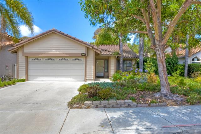 1424 Via Venusto, Oceanside, CA 92056 (#190039931) :: Neuman & Neuman Real Estate Inc.