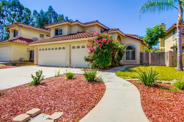 335 Springtree Pl, Escondido, CA 92026 (#190040048) :: Neuman & Neuman Real Estate Inc.