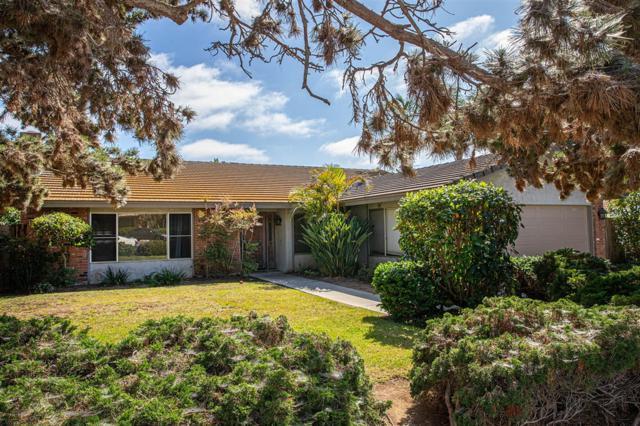 1735 Kirk Pl, Carlsbad, CA 92008 (#190040105) :: Cane Real Estate